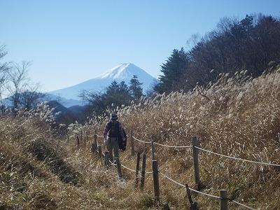 丸川峠からの富士