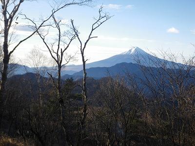 ハマイバ丸からの富士