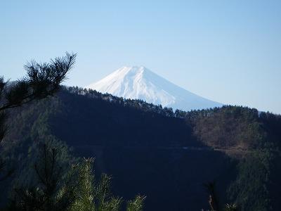 坪山からの富士