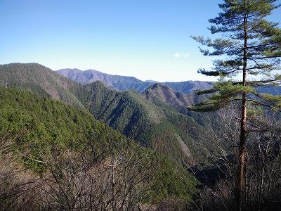 登ってきた坪山を林道から見る