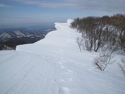 鹿俣山方向を振り返ると雪庇