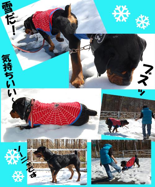 小淵沢雪遊び