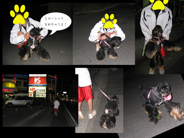 ジャックの散歩