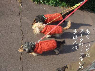 photo5757.jpg
