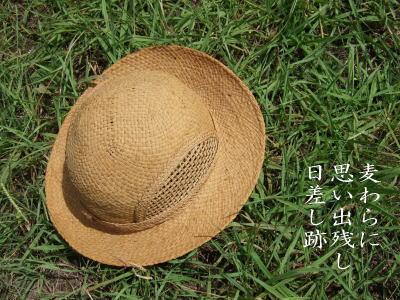 photo95671.jpg