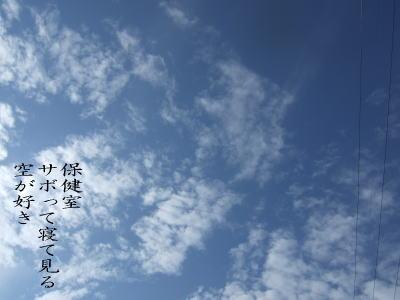 photo95881.jpg