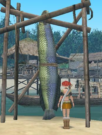 マラッカの魚なのです