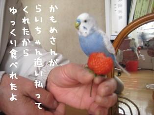 IMG007_0582.jpg