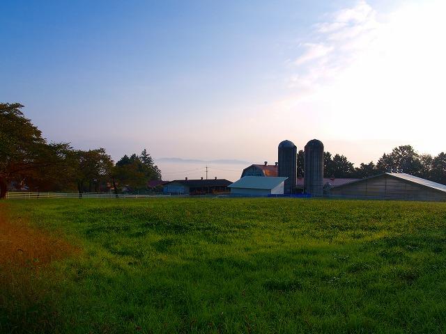 朝の光 牧場