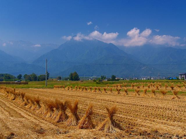 池田町の風景