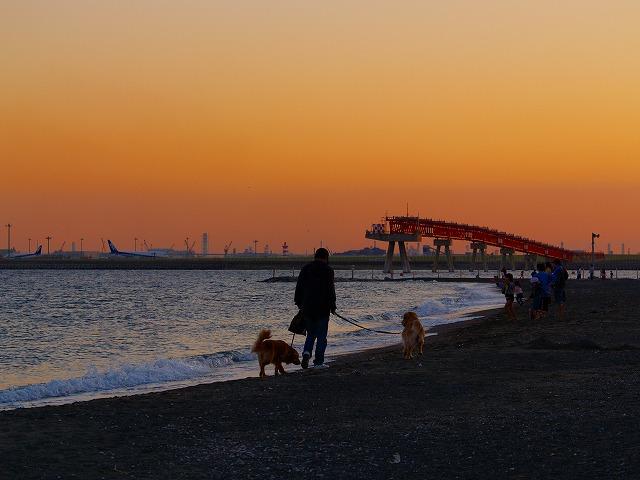 夕暮れの海浜公園