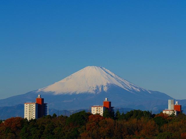 富士とマンション