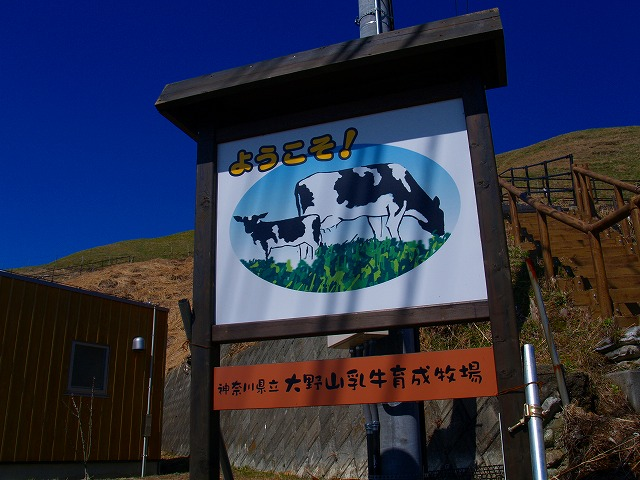 大野山牧場