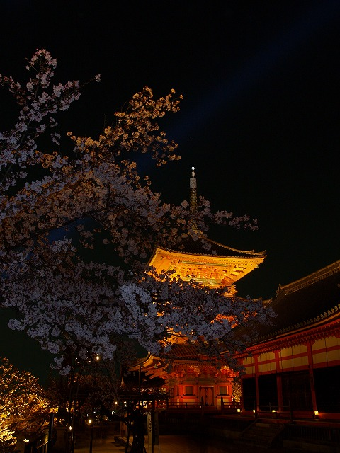 s-iyppP4056896清水夜景4
