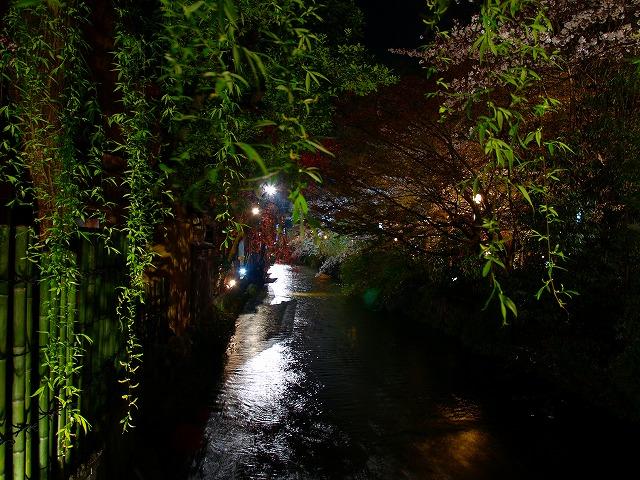 s-iyppP4067210祇園白川4