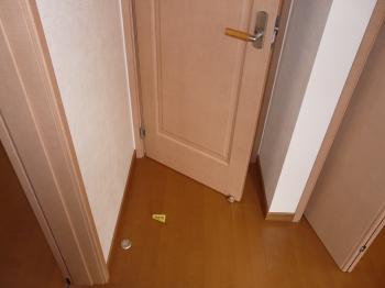 ドアの付け替え
