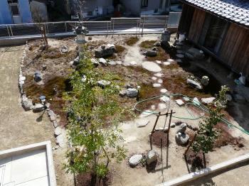 柔らかくなった庭