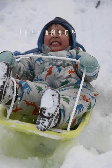 2008正月雪遊び2