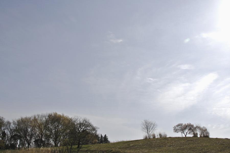 野津田公園433