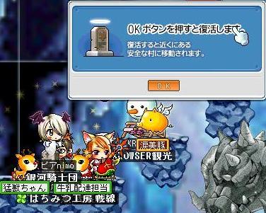 Maple0211.jpg