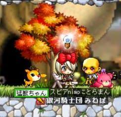 Maple0903.jpg