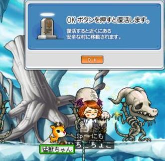 Maple1469.jpg