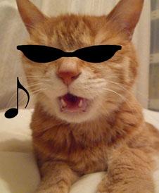 グラサン猫2ss