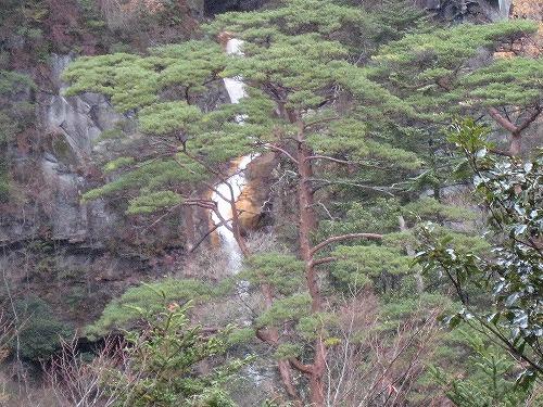 19滝と赤松