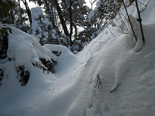 55深い雪