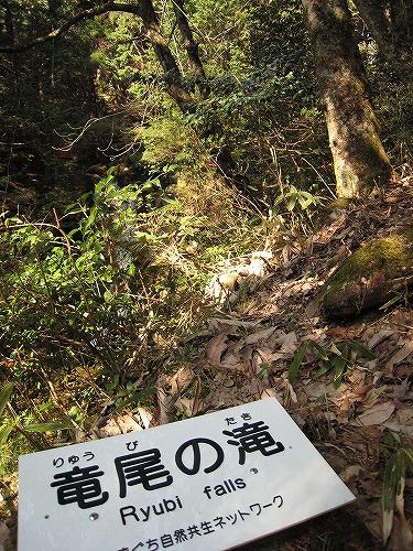 10竜尾の滝