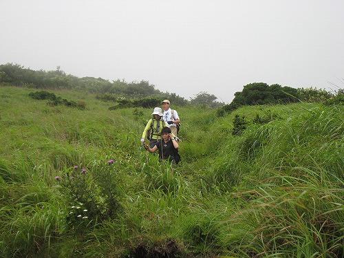 草原登山道