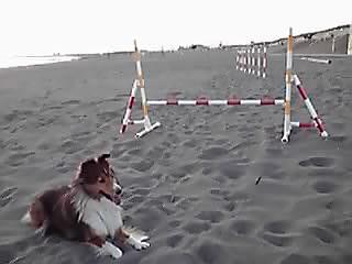 砂浜スパルタ特訓ざますか(泣)