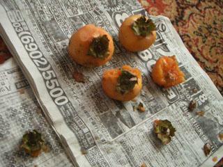 渋々シブ柿食って、旨かったか?