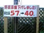 nae-yasuuri.jpg