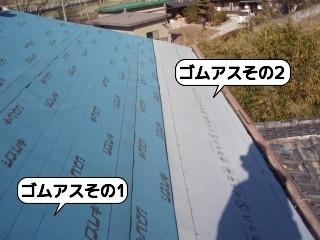 20090118_095545.jpg