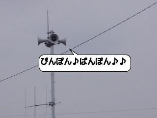 20090605_213533.jpg