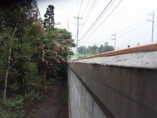 田沼 島田邸 004