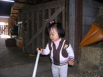 牛小屋の掃除