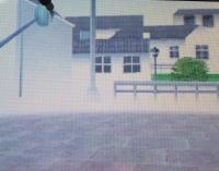 10ぴょんた画像 030
