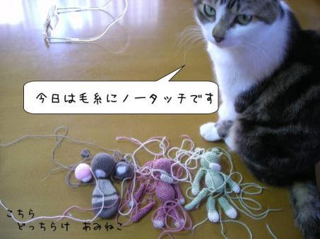 毛糸からませの刑の効果かな(゜m゜*)プッ