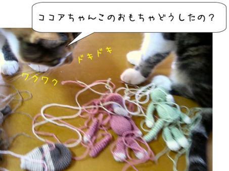 チョコちゃん登場(*´∇`*)