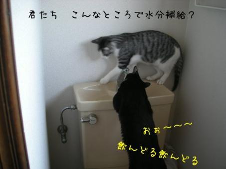 回りがビショビショだぁ~(T_T)