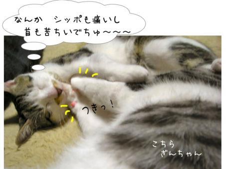 悪い夢見そう・・・・(-。-;)