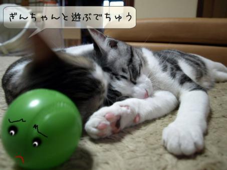 可愛そうなボールちゃん(T_T)