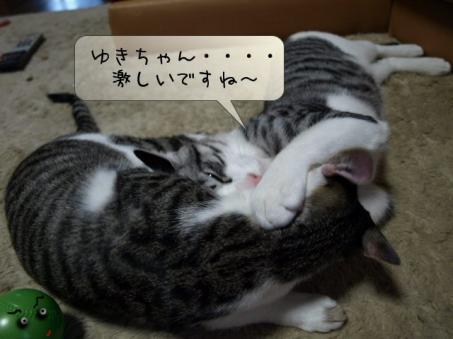 ぎんちゃんドン引き(^▽^;)