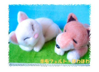 sleeping dogcat1