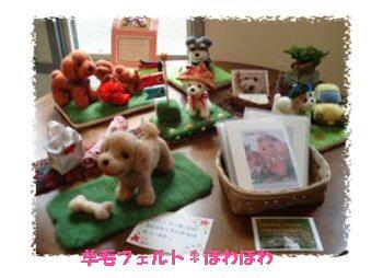 galleryShirakata-1.jpg