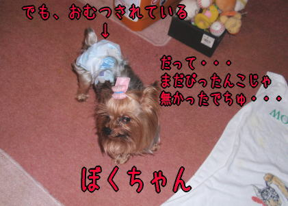 20092504
