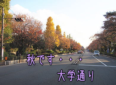 20112901