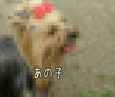 21050401.jpg